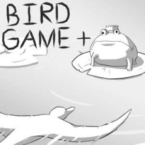 Image du jeu Bird Game +
