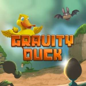 Image du jeu Gravity Duck